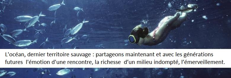 L'océan, dernier territoire sauvage : partageons maintenant et avec les générations futures l'émotion d'une rencontre, la richesse d'un milieu indompté, l'émerveillement.