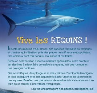 « Vive les requins ! » La nouvelle brochure à dévorer