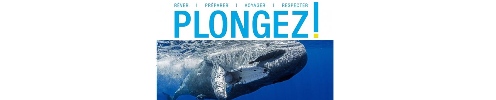 Presse Plongée : PLONGEZ N°4 -Juillet -Aout 2016 – Dans le sillage des cachalots