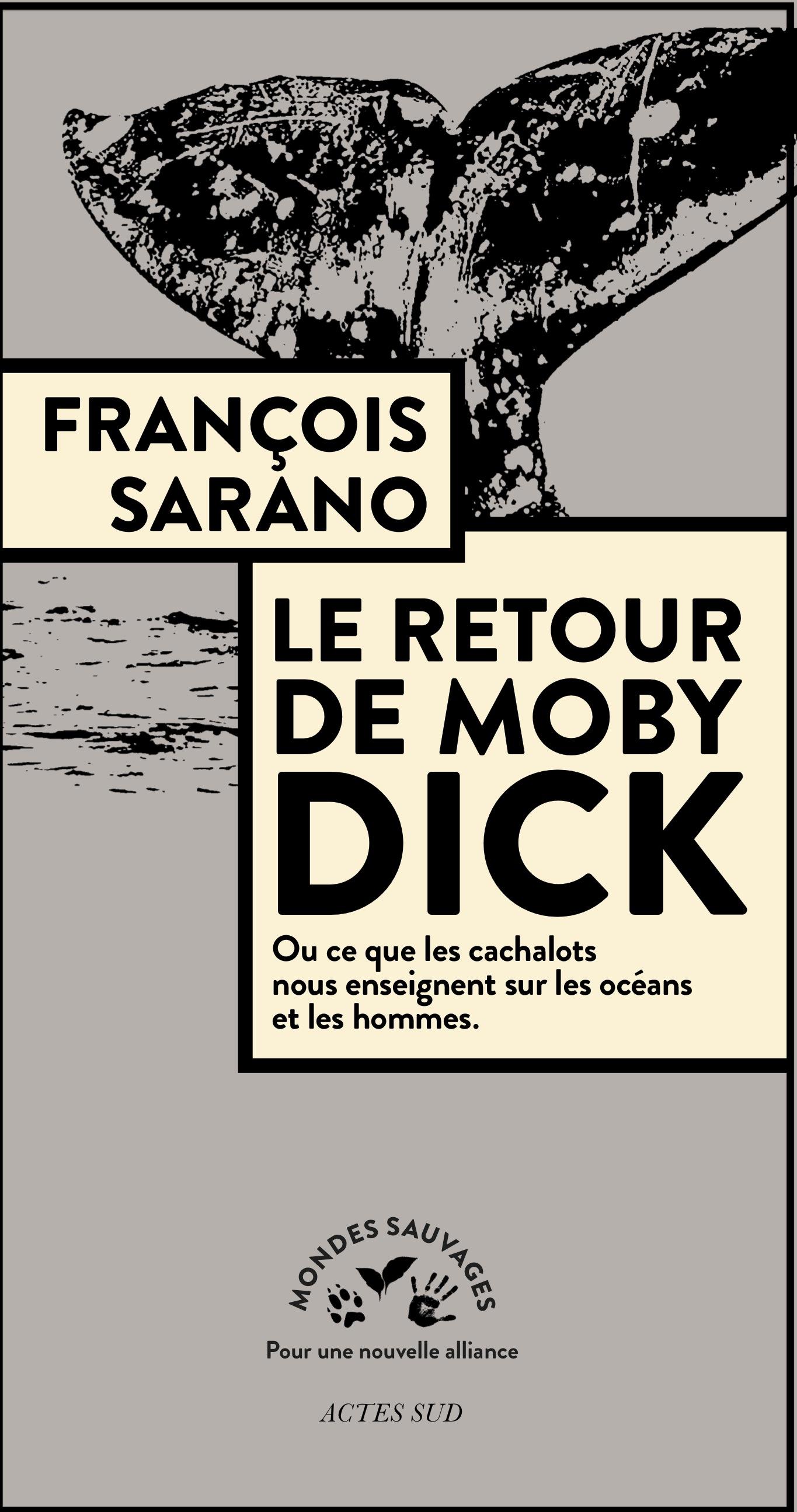 Couverture de Retour de Moby Dick