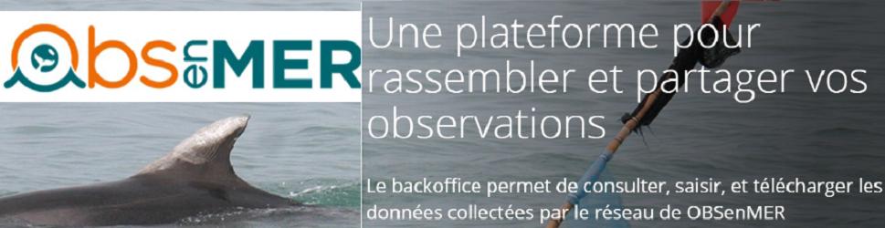 Rejoignez cette aventure participative et contribuez à la connaissance des milieux marins.