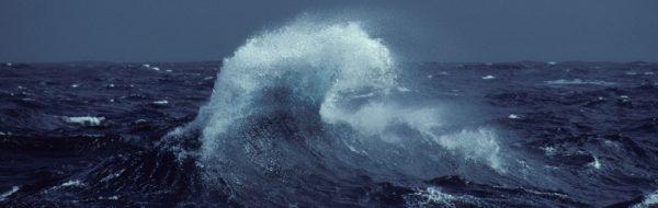 L'Océan a des droits ! – Episode 5- Quel tribunal pour les Ecocides?