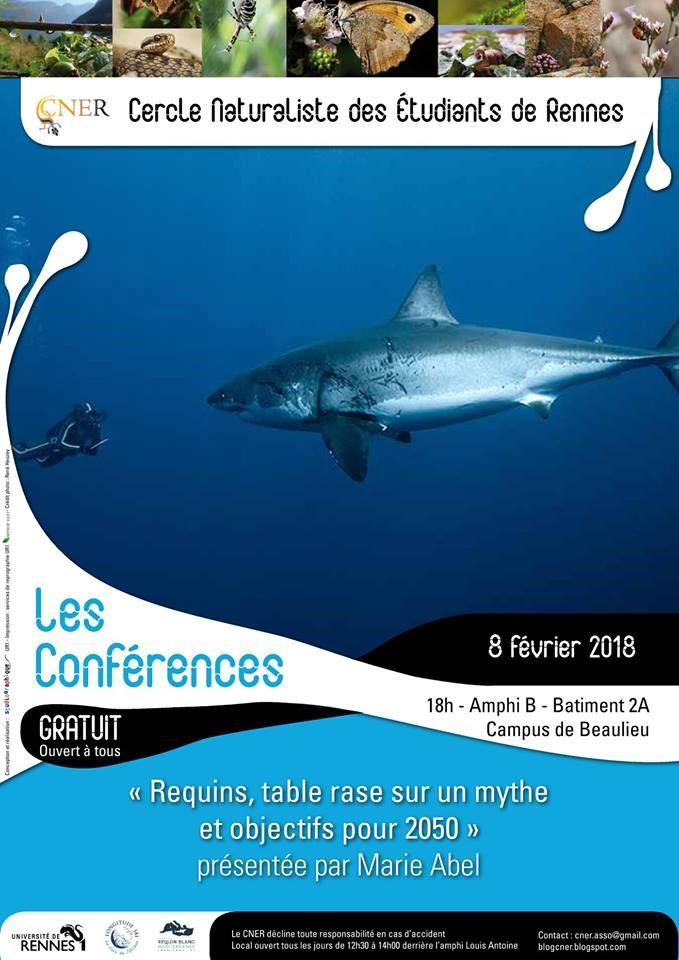 Les Requins, au-delà du mythe, une conférence de Marie Abel, disponible en vidéo