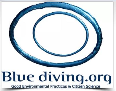 bluediving