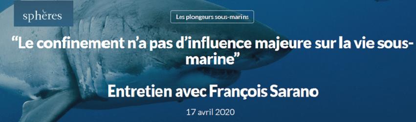 """""""Le confinement n'a pas d'influence majeure sur la vie sous-marine"""""""