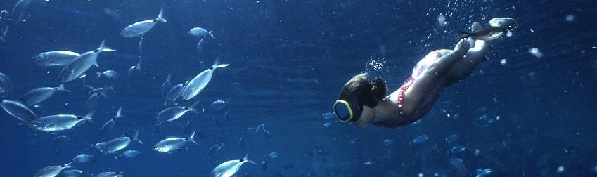 Plongeur sous-marin: témoin borgne et/ou spectateur privilégié?