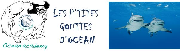 Les P'tites gouttes d'Océan – Episode 3