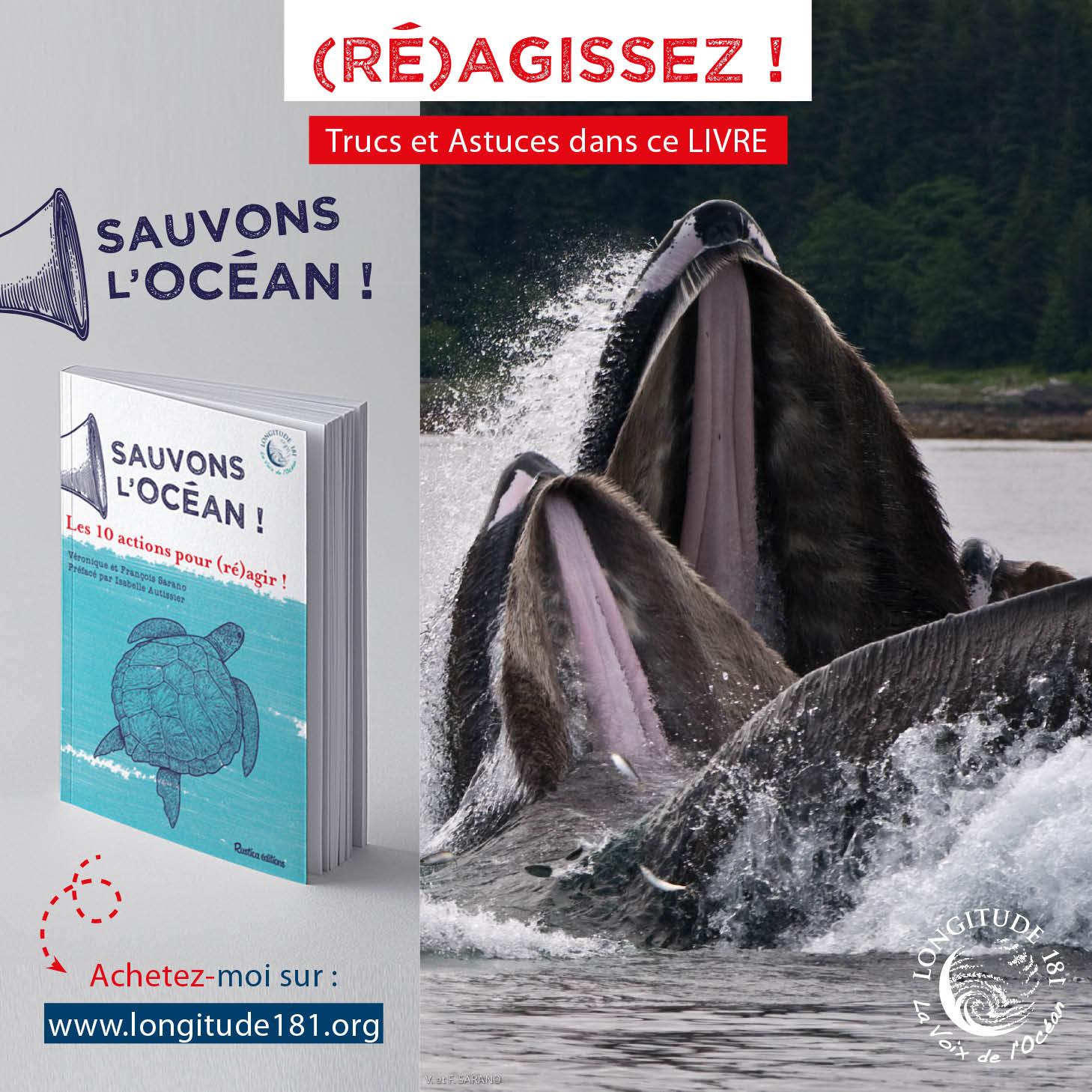 Sauvons l ocean post Fb baleine