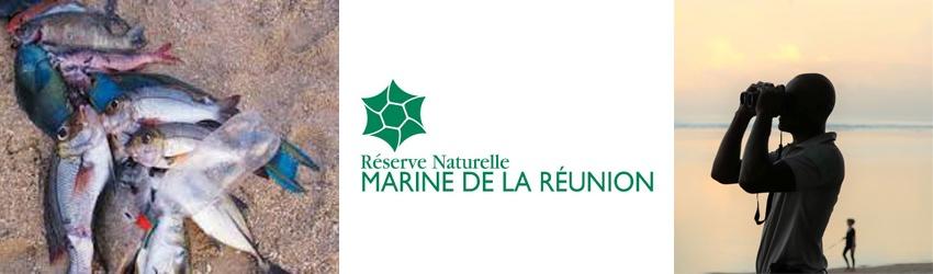 Braconnage et biodiversité sur l'Ile de La Réunion
