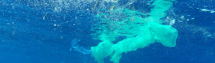 Plastique: Faut-il dépolluer les océans?