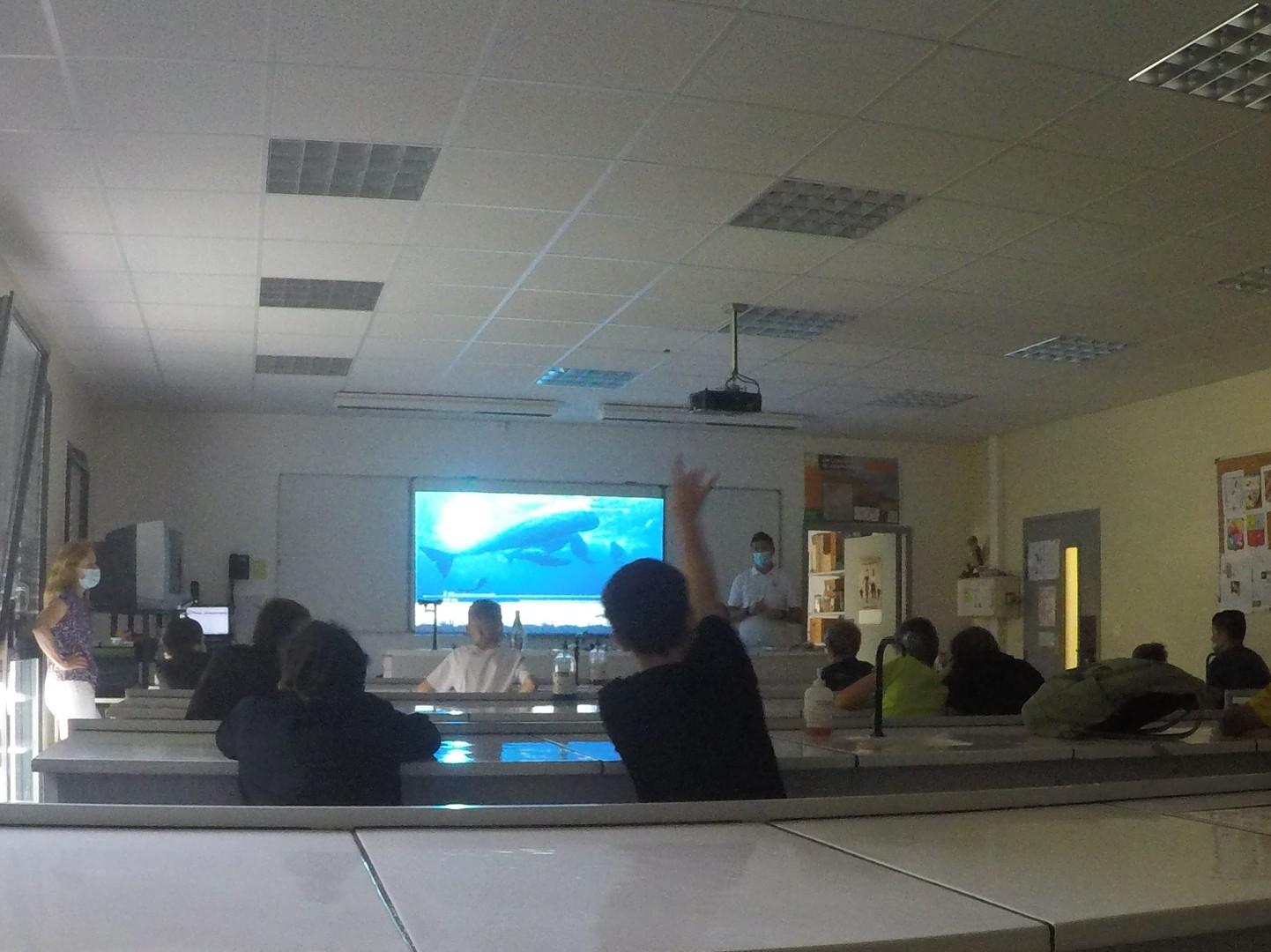 Ocean academy dans deux collèges de AURA en Juin