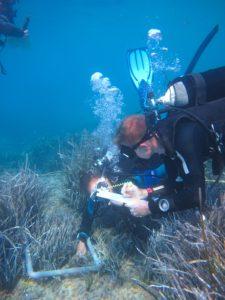 Scientific dive data collect