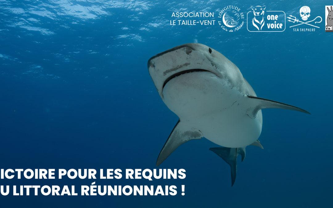 Victoire pour les requins de La Réunion!